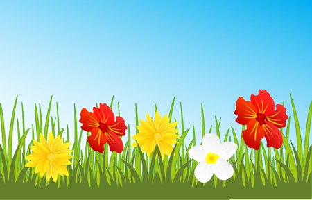 Glade with flower Illustration