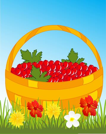 Basket with berry. Illustration