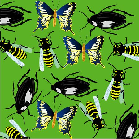 Background from insect Illustration