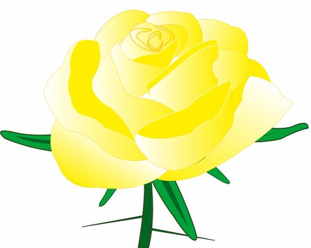 Rose yellow with thorn