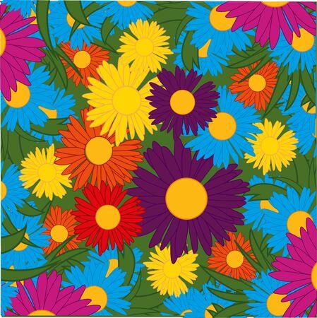Flower of the daisywheel varicoloured