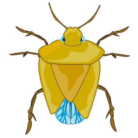 Bad insect bedbug vector illustration