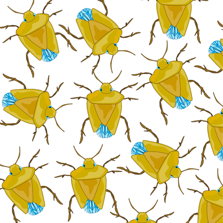 Insect bedbug pattern Vector illustration.