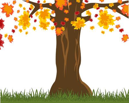 Vector illustration autumn tree with falling foliage
