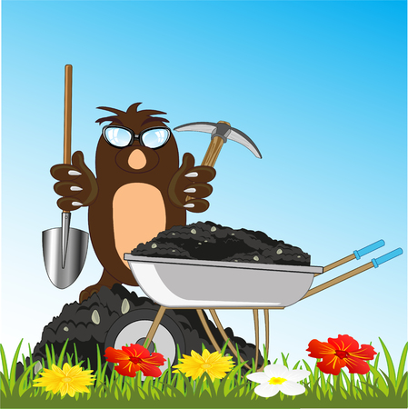 Animal mole loads wheelbarrow by land by means of shovels and pickax