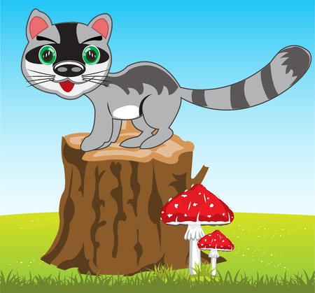 The Wildlife racoon on year glade.Vector illustration