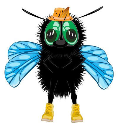 Vector illustration insect fly in shoe and hat