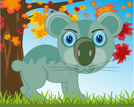 Vector illustration animal koala on background of the nature