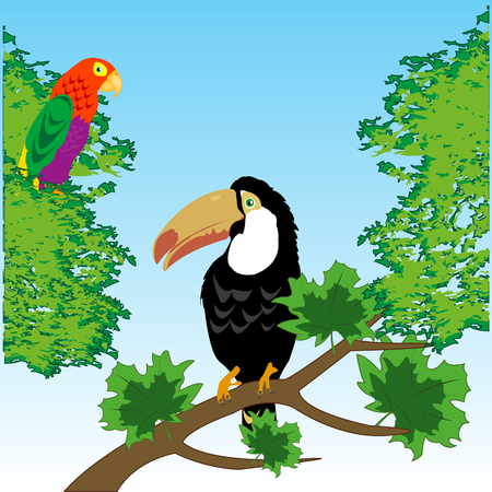 Birds toucan and parrot in tropical wood