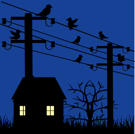 Night landscape with house and electric pole with bird