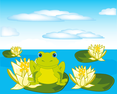 Vector illustration of the frog sitting on water lily