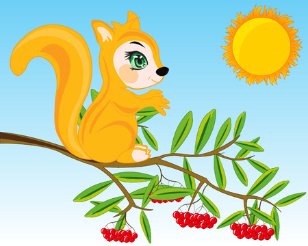 Cartoon animal squirrel on branch of rowanberry with ripe berry