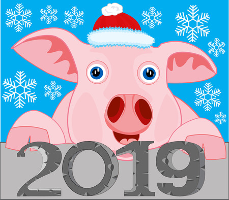 Vector illustration of the new year to pigs