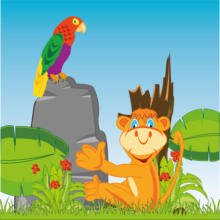 Vector illustration animal marmoset and parrots in jungle