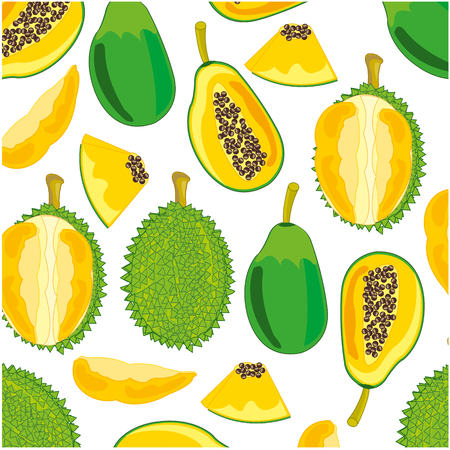 Vector illustration of the decorative pattern from exotic fruit