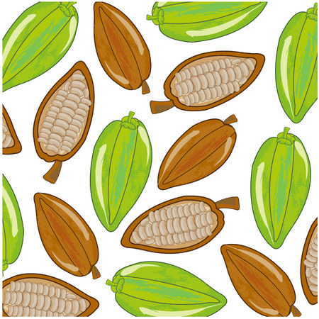 Vector illustration of the decorative pattern from fruit cacao ripe and green