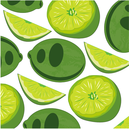 Vector illustration of the decorative pattern of the tropical fruit lime