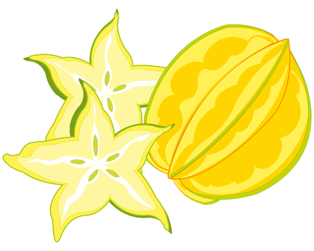 Vector illustration of the exotic tropical fruit carambola