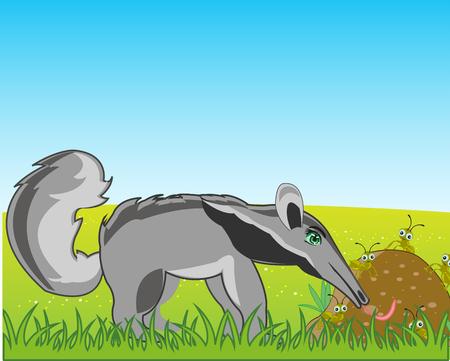Vector illustration of the wildlife anteater on glade beside anthill Illustration