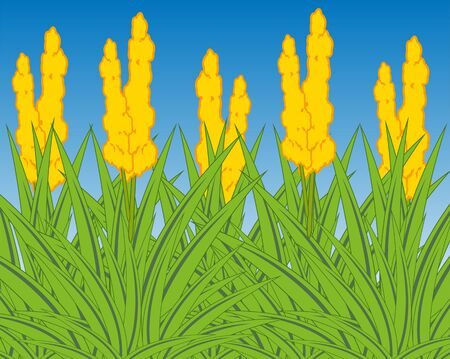 Vector illustration of the year field with flower