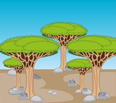 Arid stone desert and exotic Drakonovo tree 向量圖像