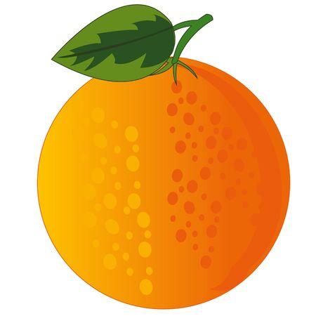 Fruit orange on white background is insulated 向量圖像