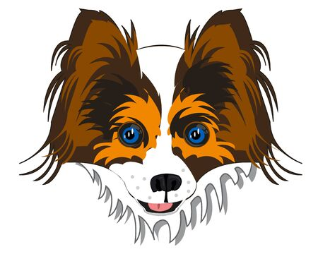 Vector illustration of the portrait of the dog papillon
