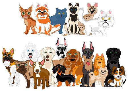 Vector illustration ensemble sorts cat and dogs
