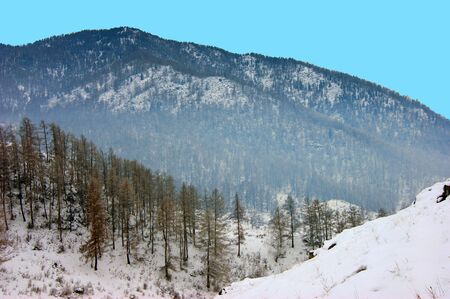 Beautiful winter landscape of the mountains covered Imagens