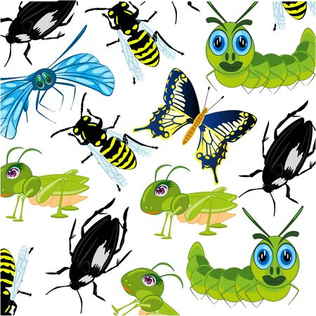 Insect decorative pattern on white background is insulated