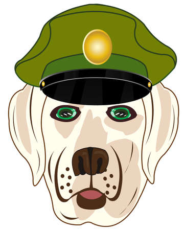 Head of the dog of the sort in service cap military