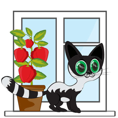Window in apartment and beautiful black cat 일러스트