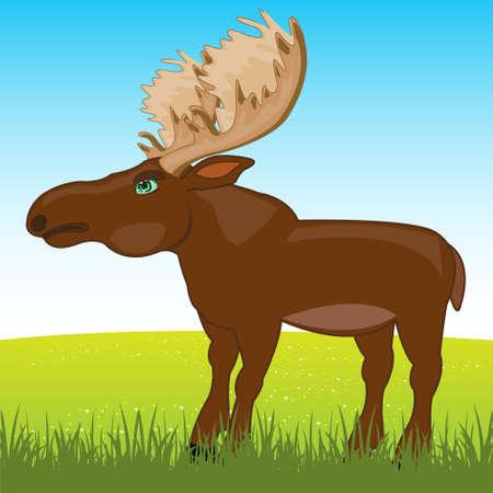 Wild ungulate animal moose on year glade 向量圖像