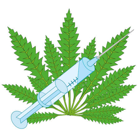 Vector illustration of the plant hemp drug and syringe