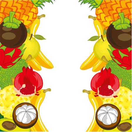 Decorative background from exotic fruit on white Illustration