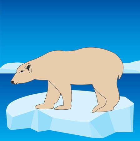 Animal polar bear on block of ice in ocean