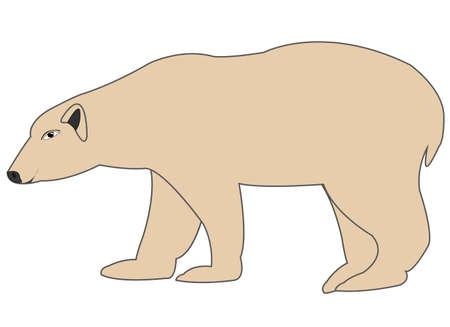 Wildlife polar bear type from the side Illustration