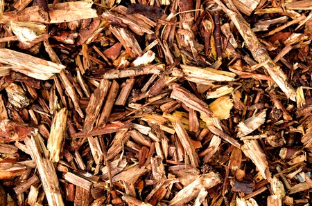 Brown mulching bark wooden texture