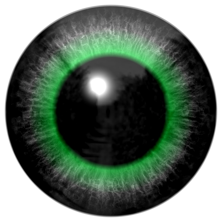 Detail of eye with grey colored iris, white veins in and black pupil with green glow Imagens - 39146484