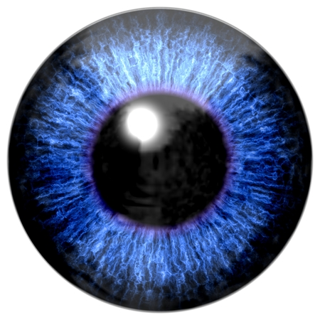capillaries: Detail of eye with blue colored iris, veins and black pupil
