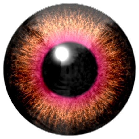 capillaries: Detail of eye with brown colored iris, gold veins and black pupil with red glow