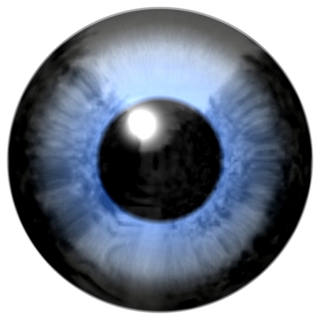 regards: D�tail de l'?il avec l'iris de couleur bleu, veines blanches et pupille noire
