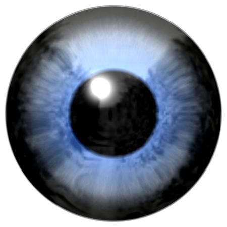 ojos azules: Detalle del ojo con el iris de color azul, venas blancas y la pupila negro Foto de archivo
