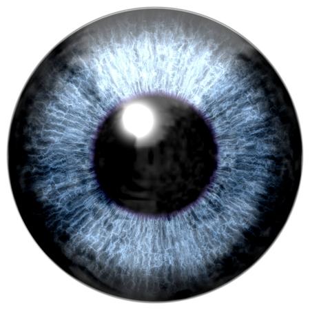 yeux: D�tail de l'?il avec l'iris de couleur bleu, veines blanches et pupille noire