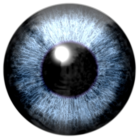 ojo humano: Detalle del ojo con el iris de color azul, venas blancas y la pupila negro Foto de archivo