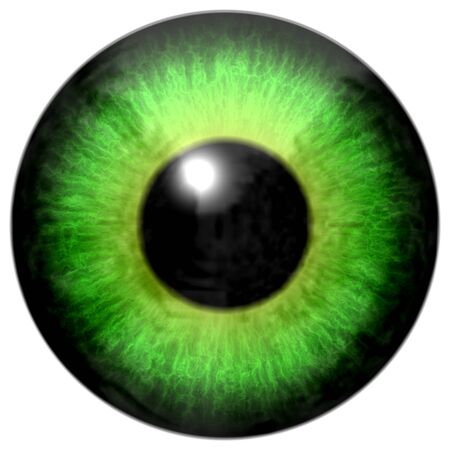 capillaries: Detail of eye with light green colored iris, veins and black pupil with glow