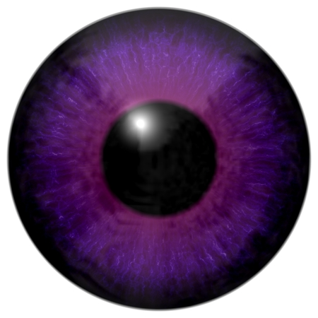 capillaries: Detail of eye with purple colored iris, veins and black pupil