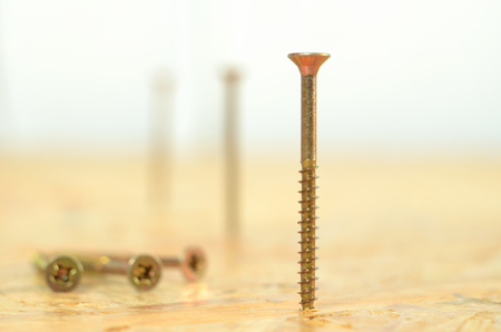 Detail of self-tapping screws in OSB board Stock Photo