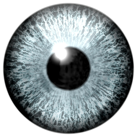 capillaries: Detail of eye with grey colored iris, white veins and black pupil Stock Photo