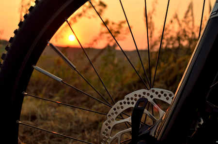 spokes: Detail of bicycle wheel in the sunset Stock Photo
